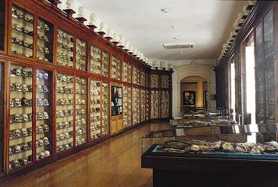 conocer-gran-canaria-museo-canario-3