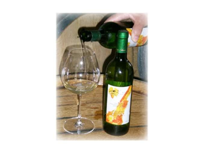 vinos-plazaperdida-blanco