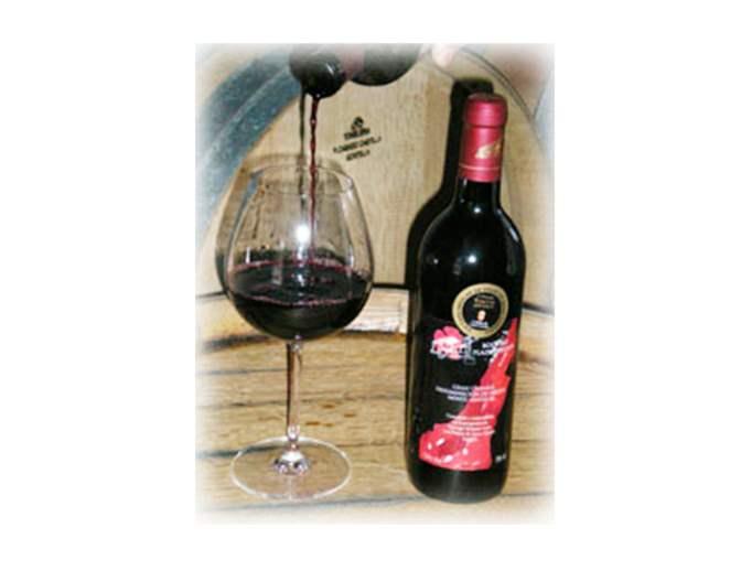 vinos-plazaperdida-tinto-joven